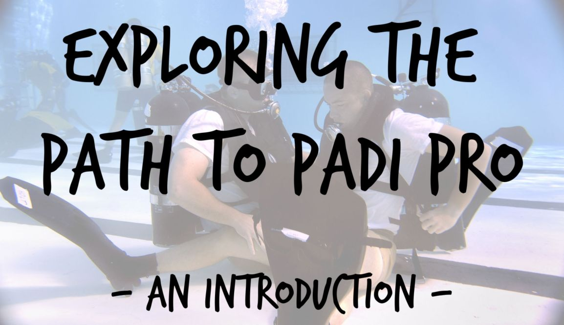 Exploring the Path to PADI Pro: Introduction