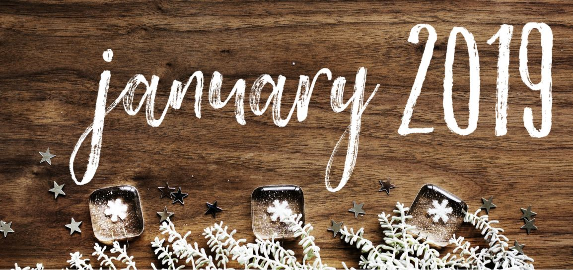 Month In Review: January2019