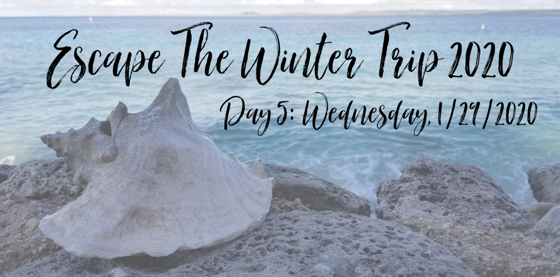 Escape The Winter Trip 2020: Day 5